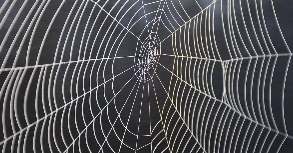 Caught in a web of denials and refusals
